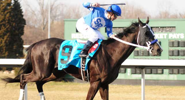 Black Onyx wins the Horseshoe Casino Cincinnati Spiral Stakes at Turfway Park with Joe Bravo up for trainer Kelly Breen and owner Sterling Racing.March 23, 2013