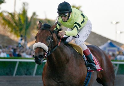 Quality Road wins Fountain of Youth