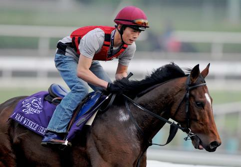 5 November 2009: Rip Van Winkle works out in preparation for the Breeders Cup at Santa Anita Race Track in Arcadia, CA.