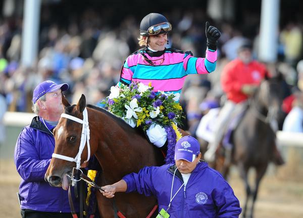 6 November 2010: Chamberlain Bridge, ridden by Jamie Theriot and trained by William B. Calhoun, closed for a victory in the Breeders Cup Turf Sprint at Churchill Downs in Louisville, KY. (Scott Serio/Eclipse Sportswire)