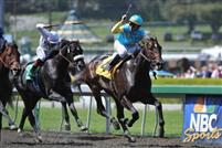 Apr 4, 2009: Pioneerof the Nile under Garret Gomez wins the Santa Anita Derby, Arcadia, California.