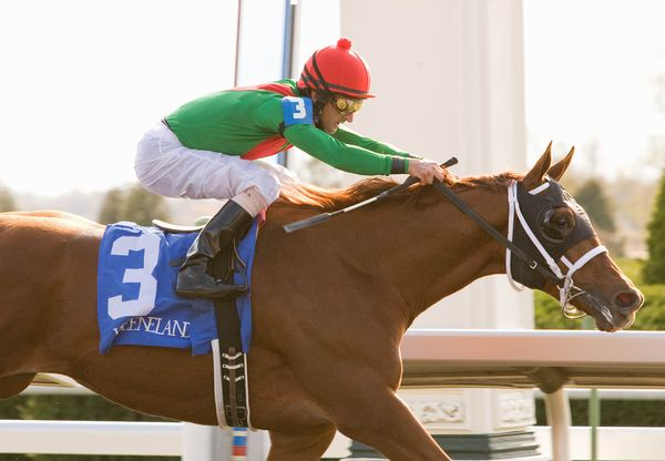 23 October 2010. Animal Kingdom and Robby Albarado win the 6th race, 2 year old, Maiden.