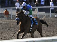 09 July 11: Tres Borrachos gets the early lead before Jose Valdivia Jr. rguides Rail Trip to victory in the 70th running of the grade 1 Hollywood Gold Cup Handicap for three year olds and upward at Hollywood Park in Inglewood, California.