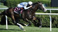 09 August 14: Courageous Cat (no. 8), ridden by Kent Desormeaux and trained by Bill Mott, wins the 25th running of the grade 2 National Museum of Racing Hall of Fame Stakes for three year olds at Saratoga Race Track in Saratoga Springs, New York.