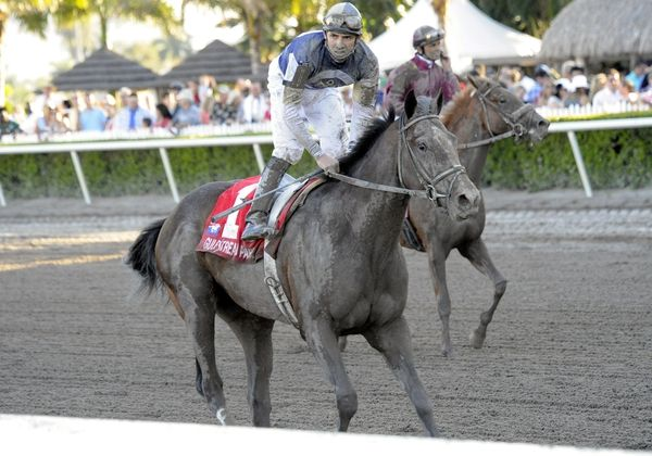 10 March 20: Soaring Empire (no. 1) in the 59th running of the grade 1 Florida Derby for three year olds at Gulfstream Park in Hallendale Beach, Florida.