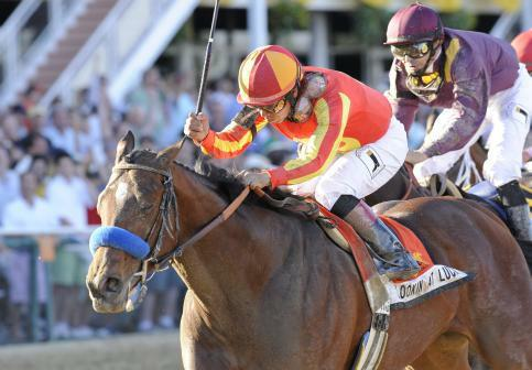 10 May 15: Lookin at Lucky (no. 7), ridden by Martin Garcia and trained by Bob Baffert, wins the 135th running of the grade 1 Preakness Stakes for three year olds at Pimlico Race Track in Baltimore, Maryland.