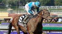 Nov. 02, 2012 - Arcadia, California, U.S - Calidoscopio (ARG) ridden by Aaron Gryder and trained by Frankel, wins the Breeders' Cup Marathon (Grade II) at Santa Anita Park in Arcadia, CA.