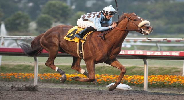 December 4, 2010.Aggie Engineer riden by Joseph Talamo wins the Native Diver Handicap at Hollywood Park, Inglewood, CA