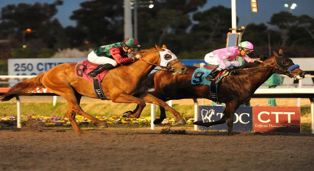December 17, 2011.Liaison ridden by Rafael Bejarano, crossing the finish line and winning the CashCall Futurity at Hollywood Park, Inglewood, CA
