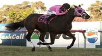 November 27, 2010.Comma To The Top ridden by Corey Nakatani wins the Generous Stakes at Hollywood Park, Inglewood, CA