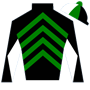 ChasingTheDerby Silks