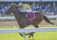 3-7-10: Chinchon (IRE), Garrett Gomez up, wins the Grade I 2010 Betfair TVG United Nations Stakes.