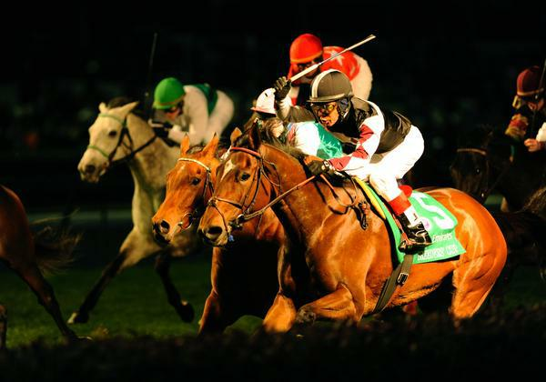 05 November 2010: Shared Account and Edgar Prado win the Breeders' Cup Filly and Mare Turf at Churchill Downs, Louisville, KY.