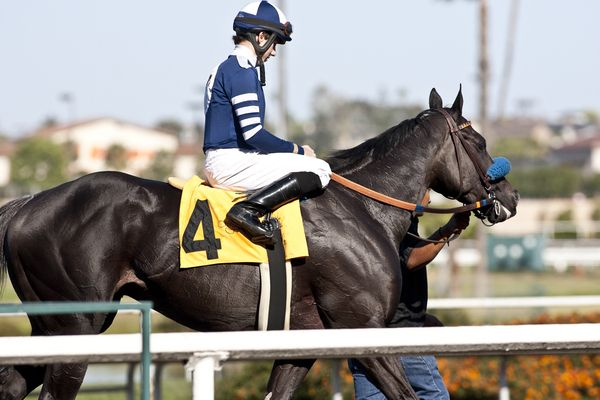 30 May, 2011: Camp Victory and Joe Talamo win the Los Angeles Handicap after Amazombie and Mike Smith are disqualified and placed third at Hollywood Park, Inglewood, CA