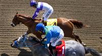 I'll Have Another nips Creative Cause in Santa Anita Derby.