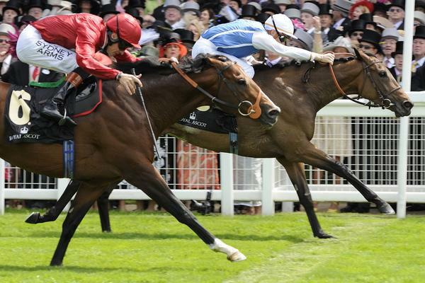 Goldikova beats Paco Boy in 2010 Queen Anne Stakes.