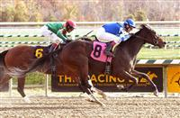 A Place to Shine wins at LRL (11-6-16)