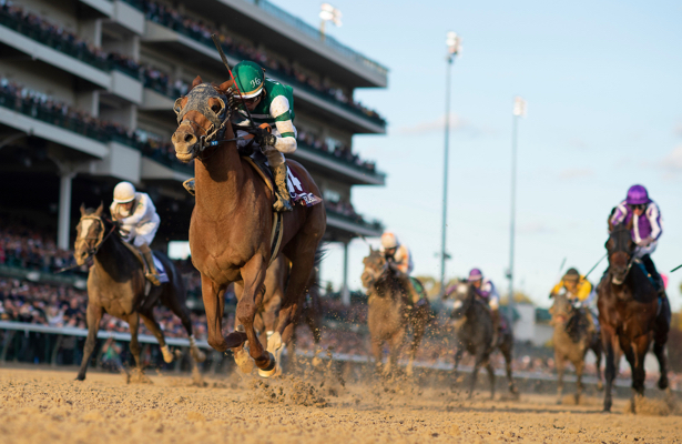 All Breeders' Cup runners cleared after 'comprehensive testing'