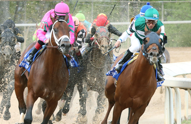 Blog: Horse Racing - Page 173