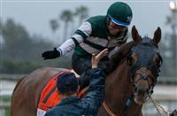 Accelerate to face nine in Del Mar's San Diego Handicap