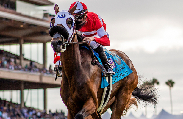 Cal-breds Acclimate, Prince Earl take aim at Breeders' Cup history