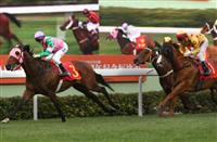 Aerovelocity lands a stylish win in last season's HKG1 Centenary Sprint Cup.