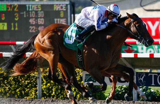 Alberts Hope with Alonso Quinonez aboard wins the 43rd running of G2 Best Pal Stakes at Del Mar Race Course in Del Mar, California on August 4,2013. (Zoe Metz/ Eclipse Sportswire)