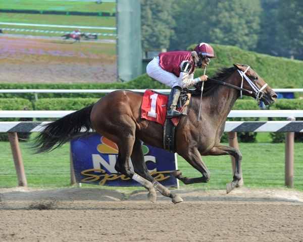 Alpha breaks maiden at Saratoga (9-3-11).