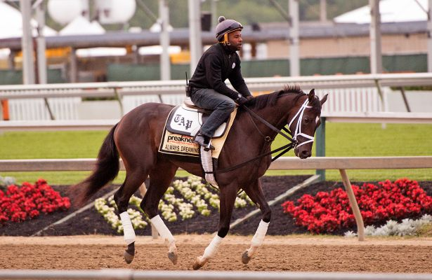 Preakness 2017: Always Dreaming gives Pletcher positive ...
