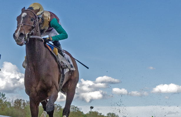 Analysis: Alwaysmining fit for a Preakness Stakes upset