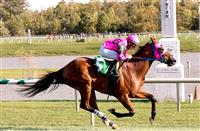 Amelia's Wild Ride wins at LRL (10-4-14)