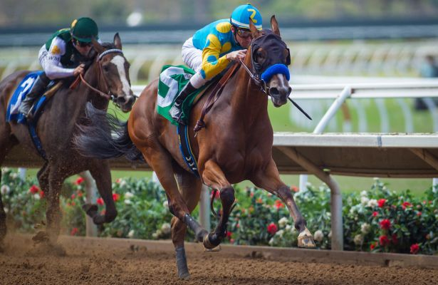 Del Mar Debutante American Cleopatra Could Be A Rising