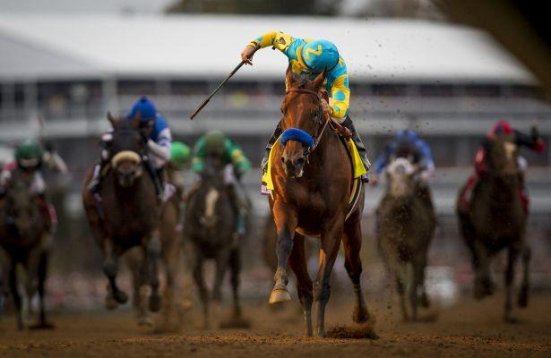 From Pharoah to Beholder: Top 10 horses of the last decade