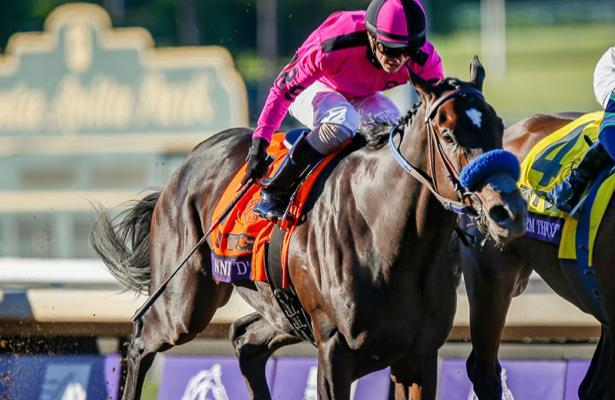 Anneau d'Or turns to Ellis Park to secure Kentucky Derby spot