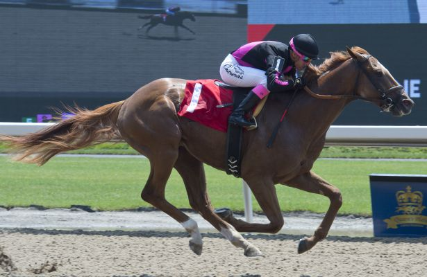Armistice Day wins his 2018 debut at Woodbine