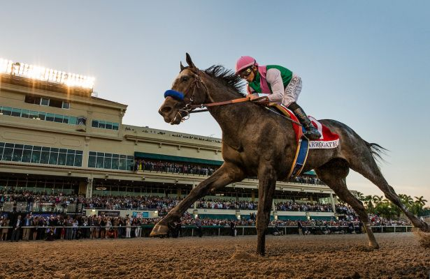 Arrogate_Pegasus World Cup 2017 2_615x400