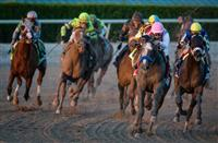 The Pegasus World Cup concept continues to evolve