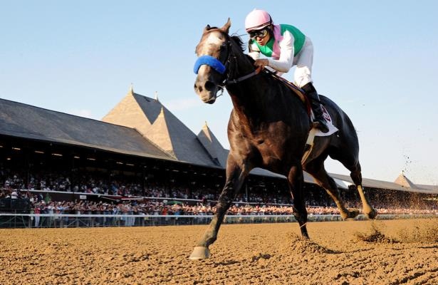 'Heartbreak' as champion racehorse Arrogate dies at age 7
