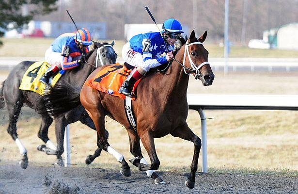 Ten Fillies Entered in Arlington Oaks