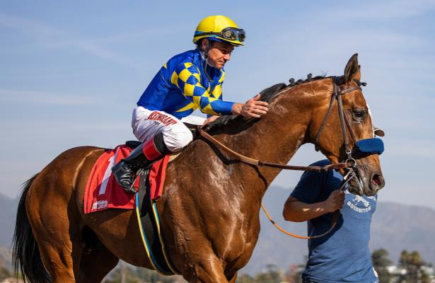 Division Rankings: Authentic looks to hold serve in Haskell