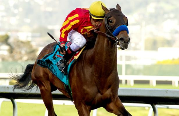Baffert hopes other Santa Anita Derby entry can 'get a piece'