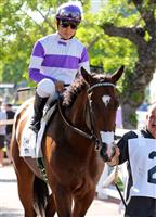 Bad Read Sanchez in paddock before his win in a Maiden Special Weight race.