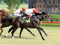 Baltimore Bob wins Da Hoss Stakes at Colonial Downs (6-12-10).