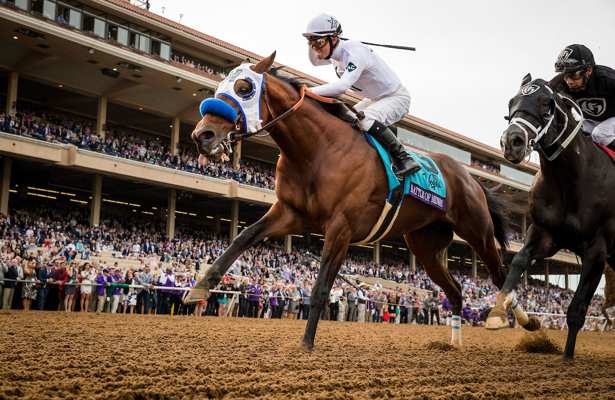 Report Battle Of Midway To Prep For Breeders Cup Dirt Mile