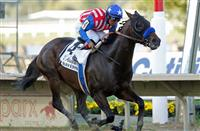 September 20, 2014: Bayern, Martin Garcia up, wins the Grade II Pennsylvania Derby at Parx Racing in Bensalem, PA. Trainer is Bob Baffert. Owner is Kaleem Shah. Joan Fairman Kanes/ESW/CSM
