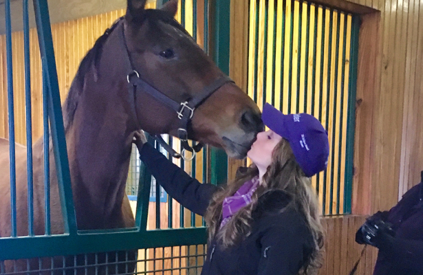 Catching up with the queens, Rachel Alexandra and Beholder