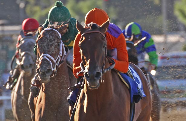 Beholder wins the Zenyatta Stakes