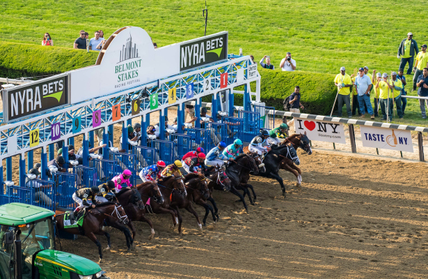 T Best Bets For Belmont - image 4