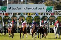 May 28, 2012. Horses break from the gate in the Gamely Stakes(GI) at Betfair Hollywood Park, Inglewood, Ca.