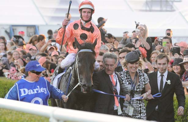 Black Caviar Final Race 615 X 400
